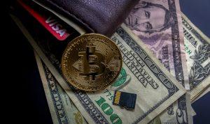 Blockchain-Entwickler laut Bitcoin